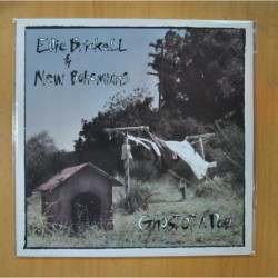 EDIE BRICKELL & NEW BOHEMIANS - GHOST OF A DOG - LP