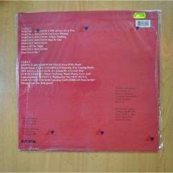 GARTH BROOKS - ROPIN THE WIND - LP