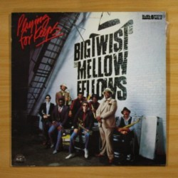 BIG TWIST MELLOW FELLOWS - PLAYING FOR KEEPS - LP