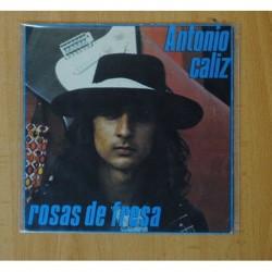 ANTONIO - CADIZ / ROSAS DE FRESA - SINGLE
