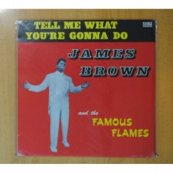 JAMES BROWN AND HIS FAMOUS FLAMES - TELL ME WHAT YOU RE GONNA DO - LP