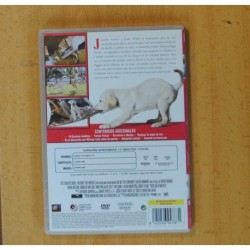 PITINGO - SOUL BULERIA Y MAS - CD