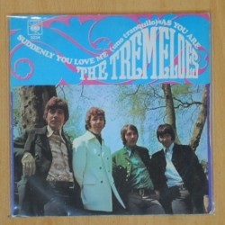 THE TREMELOES - SUDDENLY YOU LOVE ME / AS YOU ARE - SINGLE