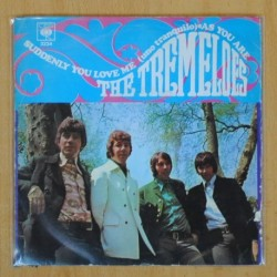 THE TREMELOES - SUDDENLY YOU LOVE / AS YOU ARE - SINGLE
